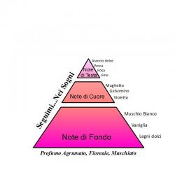 Seguimi nei Sogni Liquido/Crema Domus Olea Toscana